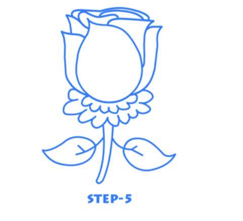 简笔画玫瑰花骨朵的画法
