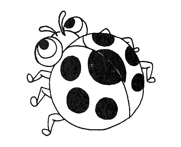 七星瓢虫简笔画图片1    七星瓢虫简笔画图片2    七星瓢虫简笔画图片3    七星瓢虫简笔画图片4    七星瓢虫简笔画图片5   七星瓢虫外形   七星瓢虫体长6.5~7.5mm。翅鞘呈红色,左右两侧各有3个黑点,接合处前方尚有一个更大的黑点。无近似种。   雌虫:体长5.