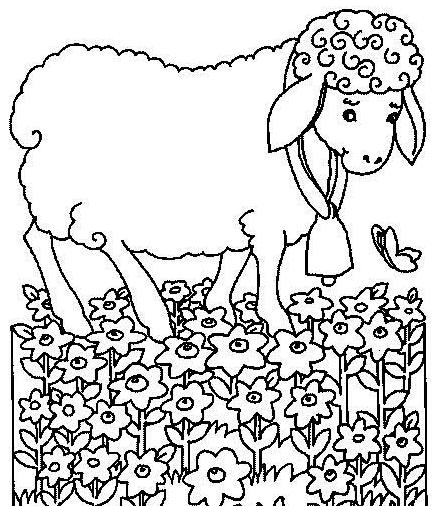 可爱卡通小动物绵羊简笔画