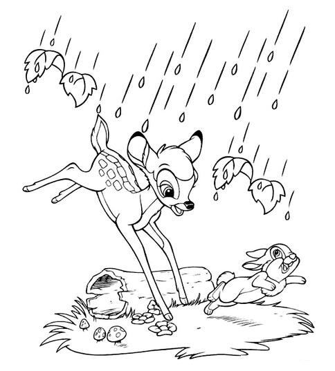 动物简笔画 长颈鹿 > 小鹿的简笔画:小鹿赛跑